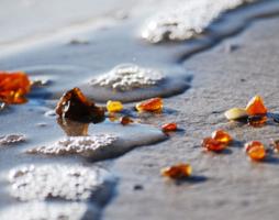 Где добывают янтарь: происхождение, места добычи, изделия