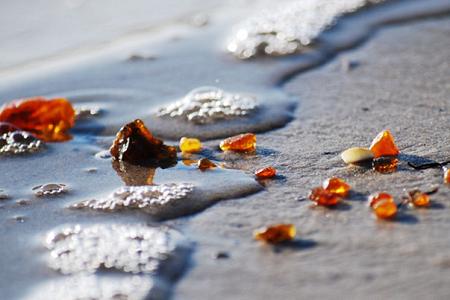 Янтарь, выброшенный на пляж в Калининградской области