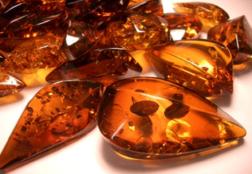 Искусственный янтарь — что это за камень
