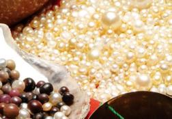 Как добывают жемчуг: способы и места добычи