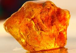 Янтарь: происхождение камня, цвета, магические и целебные свойства